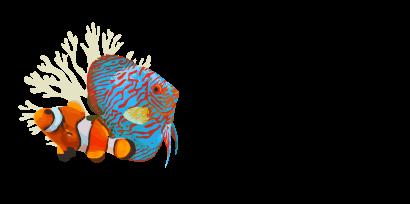 Aqualife Aquarium Logo
